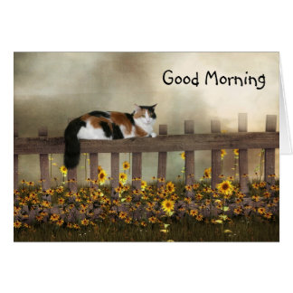 Good morning calico kitty card