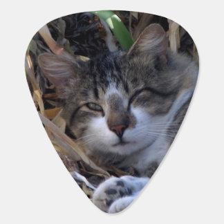 Good Morning Cat Guitar Pick