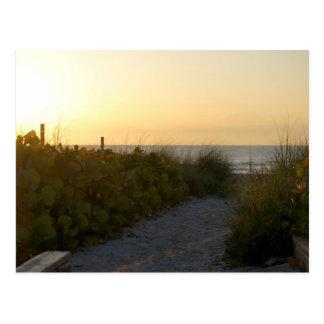 Good Morning Cocoa Beach Postcard