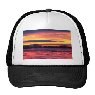 Good Morning Geese Trucker Hat