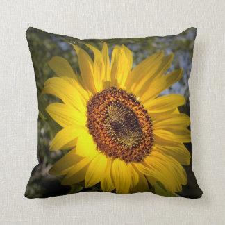 Good Morning Sunshine American MoJo Pillow