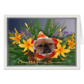 Good Morning Sunshine Card