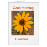 Good Morning, Sunshine! Cards