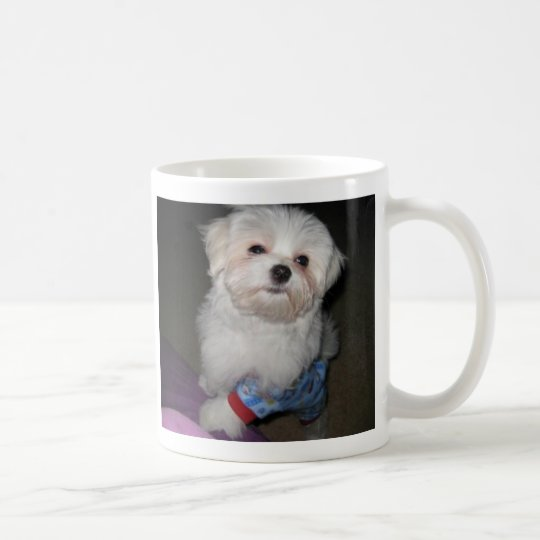 Good Morning Sunshine Maltese Mug