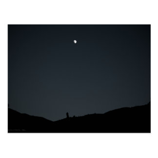Good Night Earth Postcard