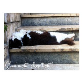 Good night, sleep tight! postcard