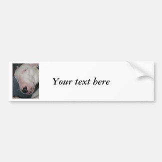 Good Night, Sleep Tight, Silly Dog Bumper Sticker