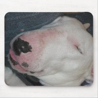 Good Night, Sleep Tight, Silly Dog Mouse Pad