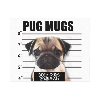 good pugs gone bad canvas print