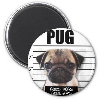 good pugs gone bad magnet