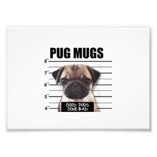 good pugs gone bad photo print