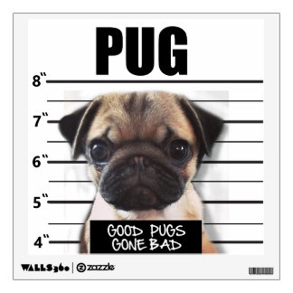 good pugs gone bad wall decal