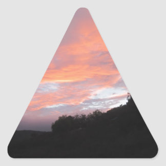 good quality but cheaper triangle sticker