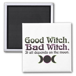 """Good Witch, Bad Witch..."" Magnets"