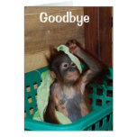 Goodbye, You'll Be Missed Card