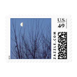 Goodnight Sweetheart Stamp
