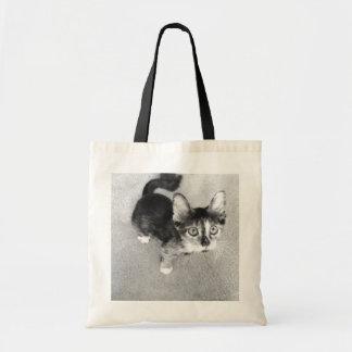 Goofy Calico Kitten, Precious Pets tote Budget Tote Bag