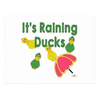 Goofy Green And Yellow Ducks It's Raining Ducks Post Cards