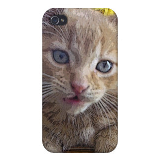 Goofy Tabby Kitty Cat Kitten, Fall Colors, Flowers Cases For iPhone 4