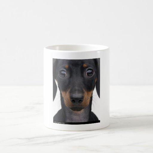 google observó el perro de la salchicha de taza clásica