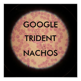 Google Trident Nachos under a microscope Posters