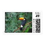 GoogleDesktopPhotosPluginWallpaper Stamp