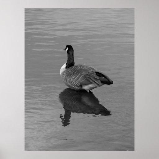 Goose2 Print