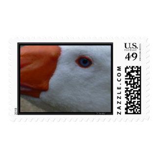 goose2 sello postal