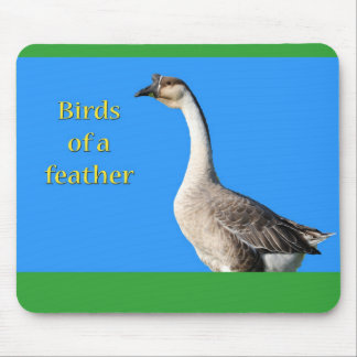 Goose: African Gray Goose Says: Birds of a Feather Mouse Pad