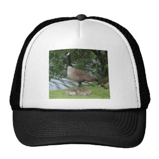 Goose and Goslings Trucker Hat