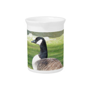 Goose At The Waterfront, Wildlife Animals, Nature Pitcher at Zazzle