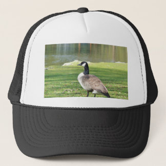 Goose at the waterfront, Wildlife Animals, Nature Trucker Hat
