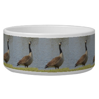 Goose By Pond Dog Bowl