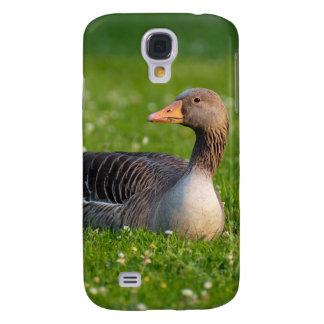 Goose HTC Vivid Cases