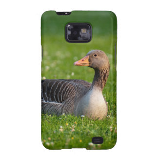 Goose Samsung Galaxy SII Cover