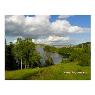 Goose Cove, Trinity Postcard