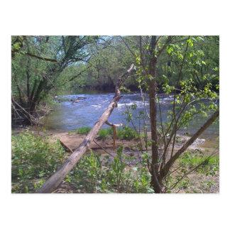 Goose Creek 2 Postcard
