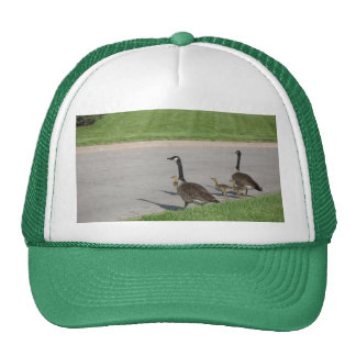 Goose Crossing Hat