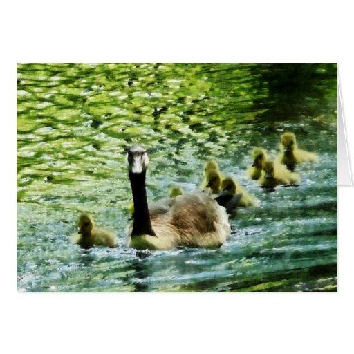 Goose Family Card