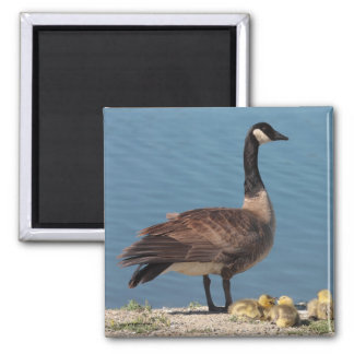 Goose Family Magnet 2