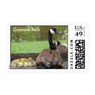 Goose Family Stamp