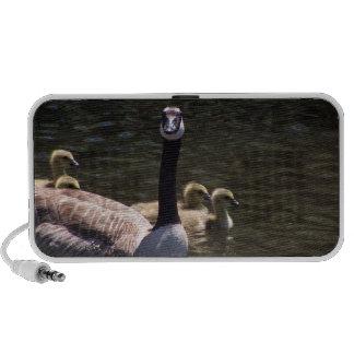 Goose Family Swimming Doodle Speaker