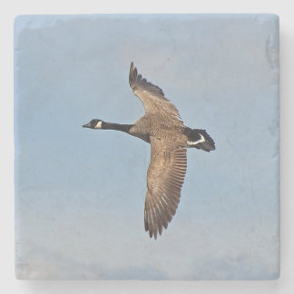Goose in Flight Stone Coaster