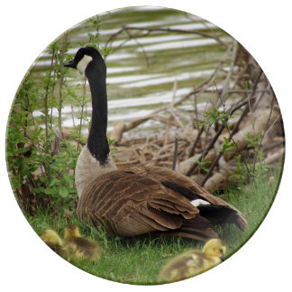 Goose Mom and Babies Dinner Plate