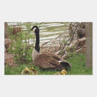 Goose Mom and Babies Rectangular Sticker