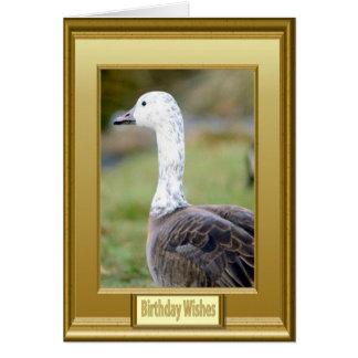 Goose on high alert card
