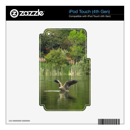 Goose on Lake Ralphine iPod Touch 4G Skin