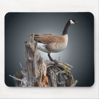 GOOSE ON SNAG #2 MOUSE PAD