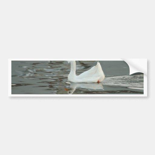 Goose or Duck? Bumper Sticker