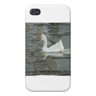 Goose or Duck? iPhone 4/4S Case